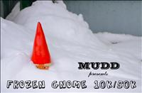 Frozen Gnome - January 13, 2013