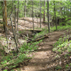 Whispering Pines Trail Run