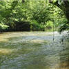 Etowah River