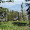 Logan Peak Trail Run