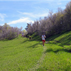 Squaw Peak 50 Mile Trail Run