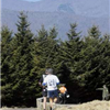 Mt Mitchell Challenge and Black Mountain Marathon