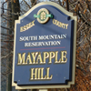 South Mountain Reservation Mayapple Ultras